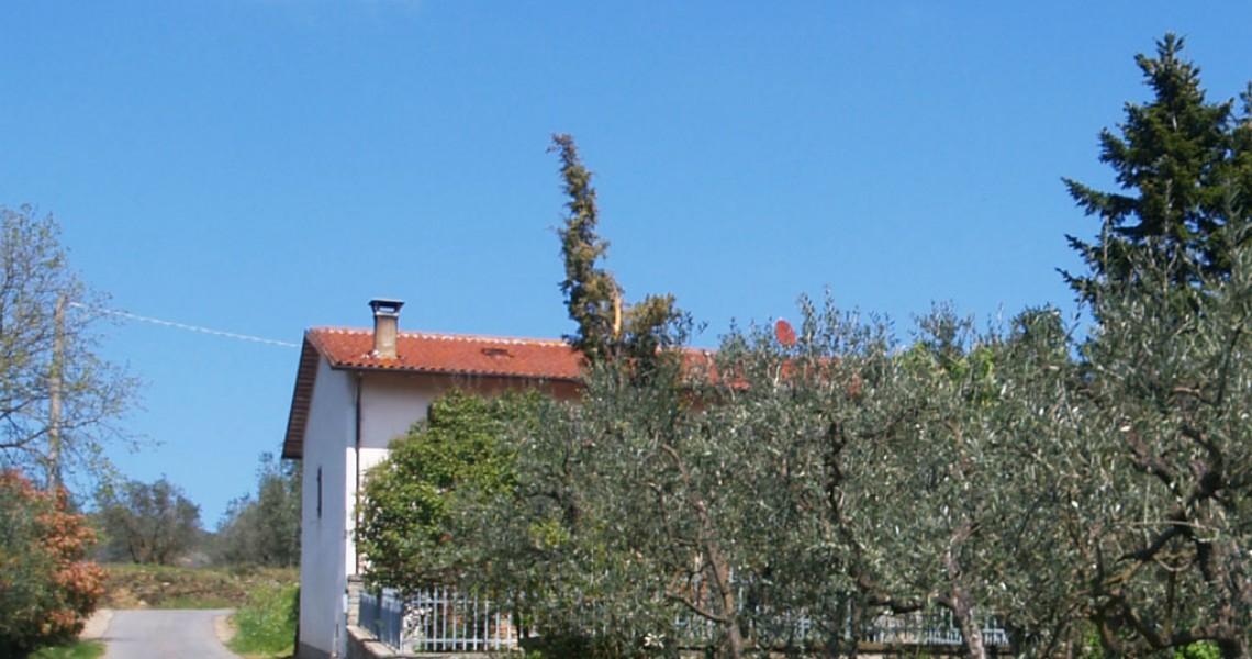 Coloniche e rustici - JKM-1014