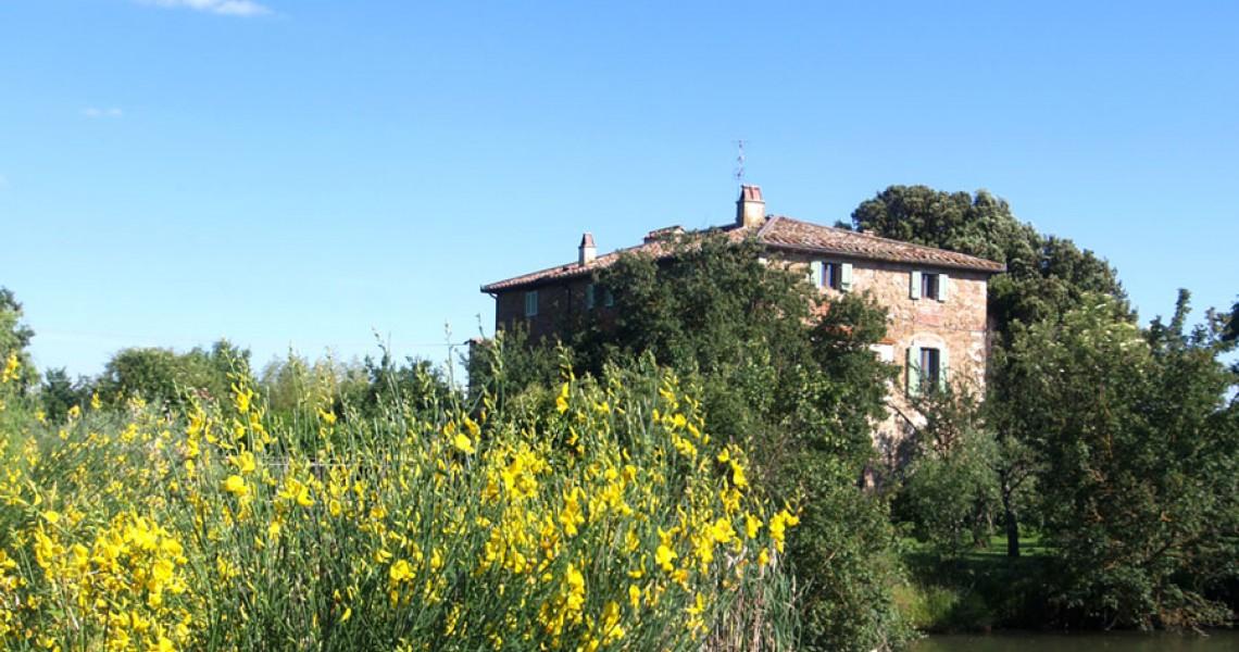 Villas and prestigious properties - JKM-805