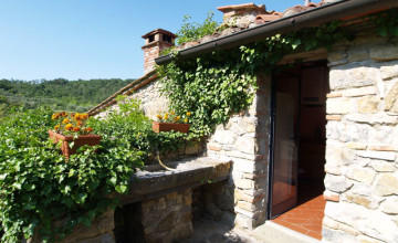 Farmhouses and farmsteads - JKM-790