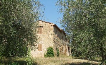 Farmhouses and farmsteads - JKM-885