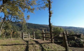 Farmhouses and farmsteads - JKM-815
