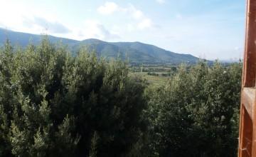 Coloniche e rustici - JKM-1044