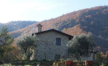 Coloniche e rustici - JKM-1045