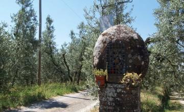 Coloniche e rustici - JKM-841