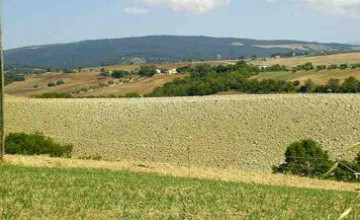 Farmhouses and farmsteads - JKM-1078