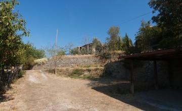Coloniche e rustici - JKM-1091